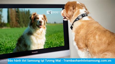 Bảo hành sửa chữa tivi Samsung tại Tương Mai