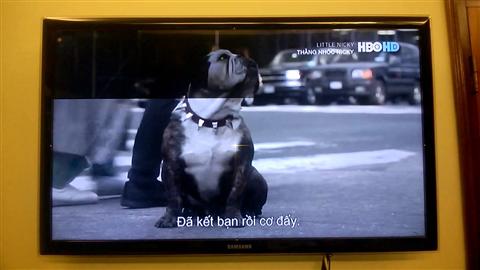 Tivi Samsung bị mất màu và cách sửa